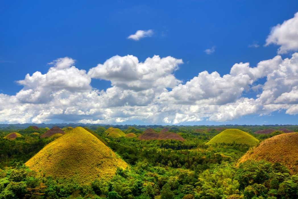 The Chocolate Hills are named because of the color of the vegetation