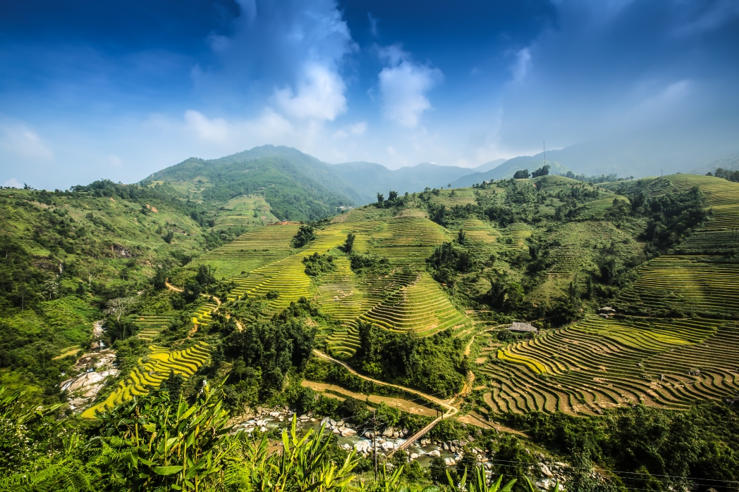 The rice terraces are calved into the Ifugao mountains
